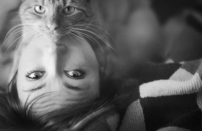 lovecats-cat-human-portrait (1)