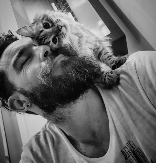 lovecats-cat-human-portrait (3)